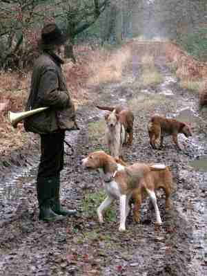 hunting in the Sologne.