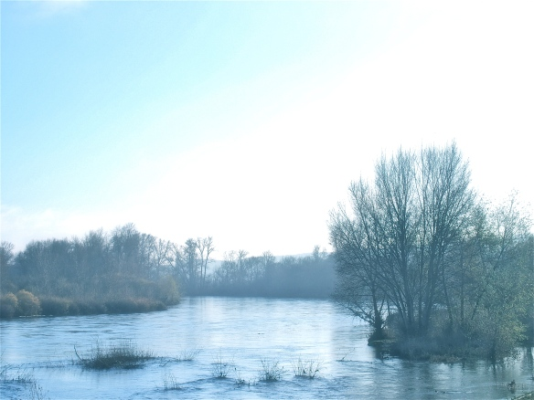 The banks of he Loire at St Satur